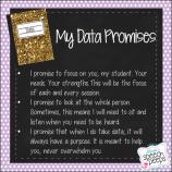 Data Promises
